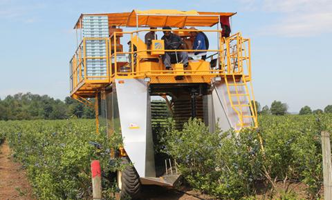 CroppedImage480290-Berry-Harvester.jpg